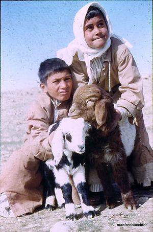 Syrien 1961